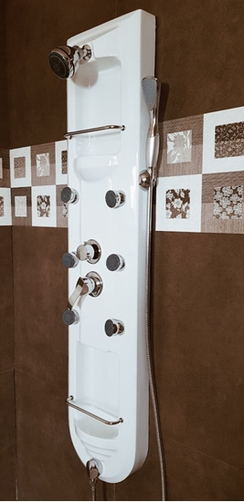 Picture of Shower Panel